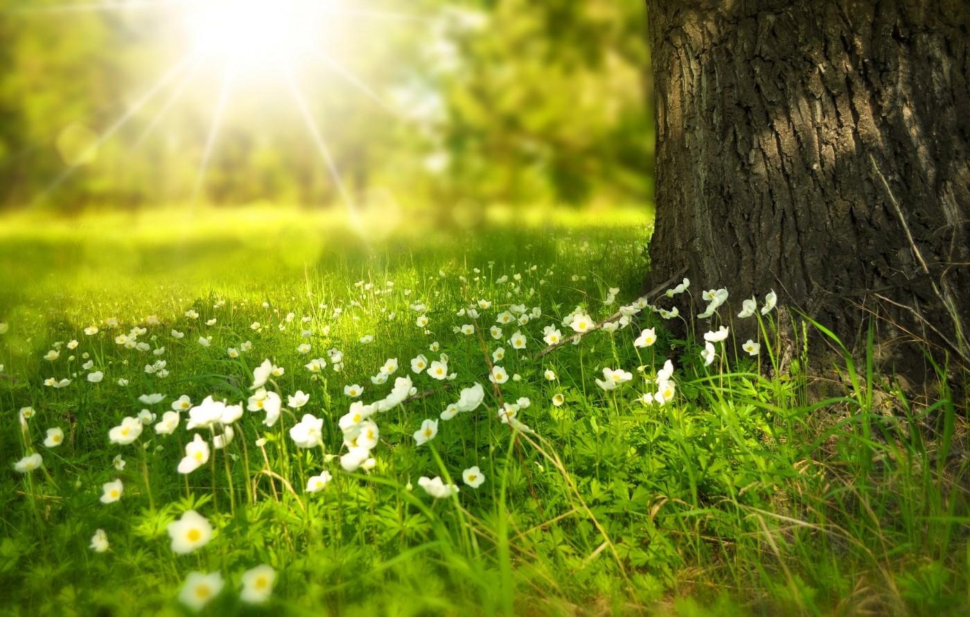 Sinä keväänä taide sai uusia muotoja